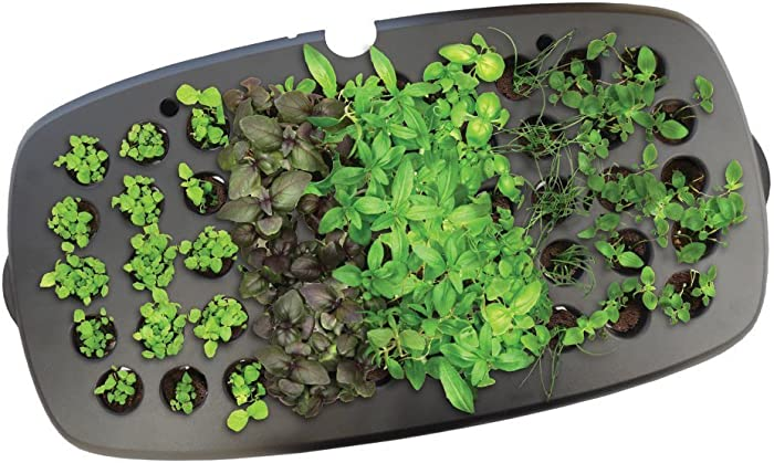 Top 9 Miracle Grow Fertilizer Lawn Applicator