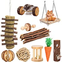 10 Pack Hamster Chew Toys Gerbil Rat Guinea Pig Chinchilla Toys Accessories, Natural Wooden Dumbbells Exercise Bell…