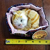Napping Sleeping Cat Kitten in Bed Collectible Figure 5-inch, 1-pc Random