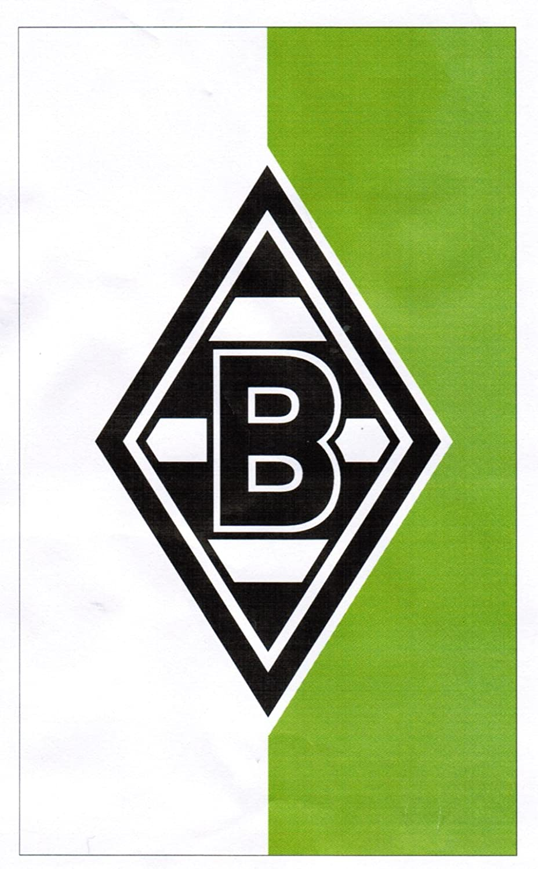 Unbekannt Mens Borussia M/önchengladbach-Fohlenelf-Artikel-Hissfahne Raute-150 x 100 cm Flag multicoloured