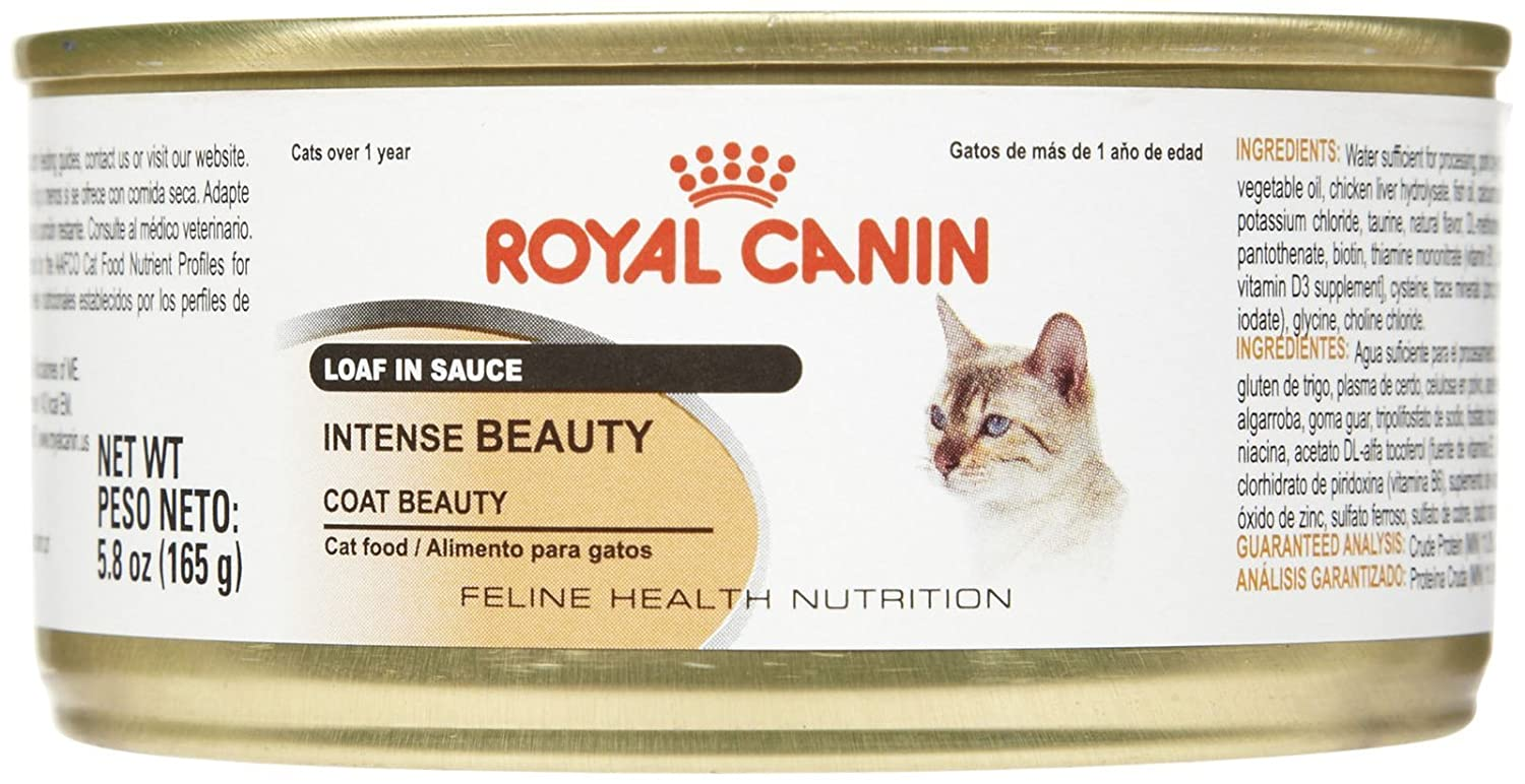 Amazon.com : Royal Canin Feline Health Nutrition Intense Beauty Loaf - 24x5.8 oz : Pet Supplies