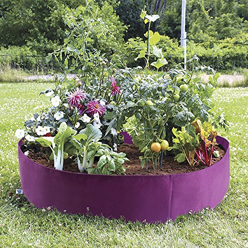 Pannow Raised Garden Bed, Fabric Raised Planting Bed Round Garden Grow Bag for Herb Flower Vegetable Plants (Dia 50'' x H 12'', Purple)