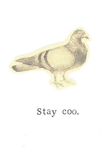 Amazon Stay Coo Vintage Pigeon Birthday Card Funny Friendship