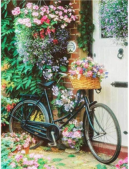 5D Diamond Painting Kit Diy Bordado Mosaico Flor Bicicleta ...