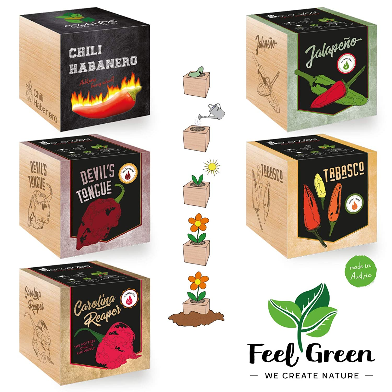 Ecocube Chili-Set Mit 5 Sorten – 25% Sparen Im Paket, Pflanzen Im Holzwürfel, Nachhaltige Geschenkidee, Grow Your Own/Anzuchtset, Made In Austria
