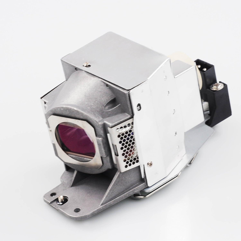 DataStor REPL LAMP W//Original OEM Bulb for BENQ PW9500