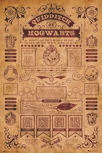 Erik Poster Harry Potter, 61 x 91, 5 cm: Amazon.es: Hogar