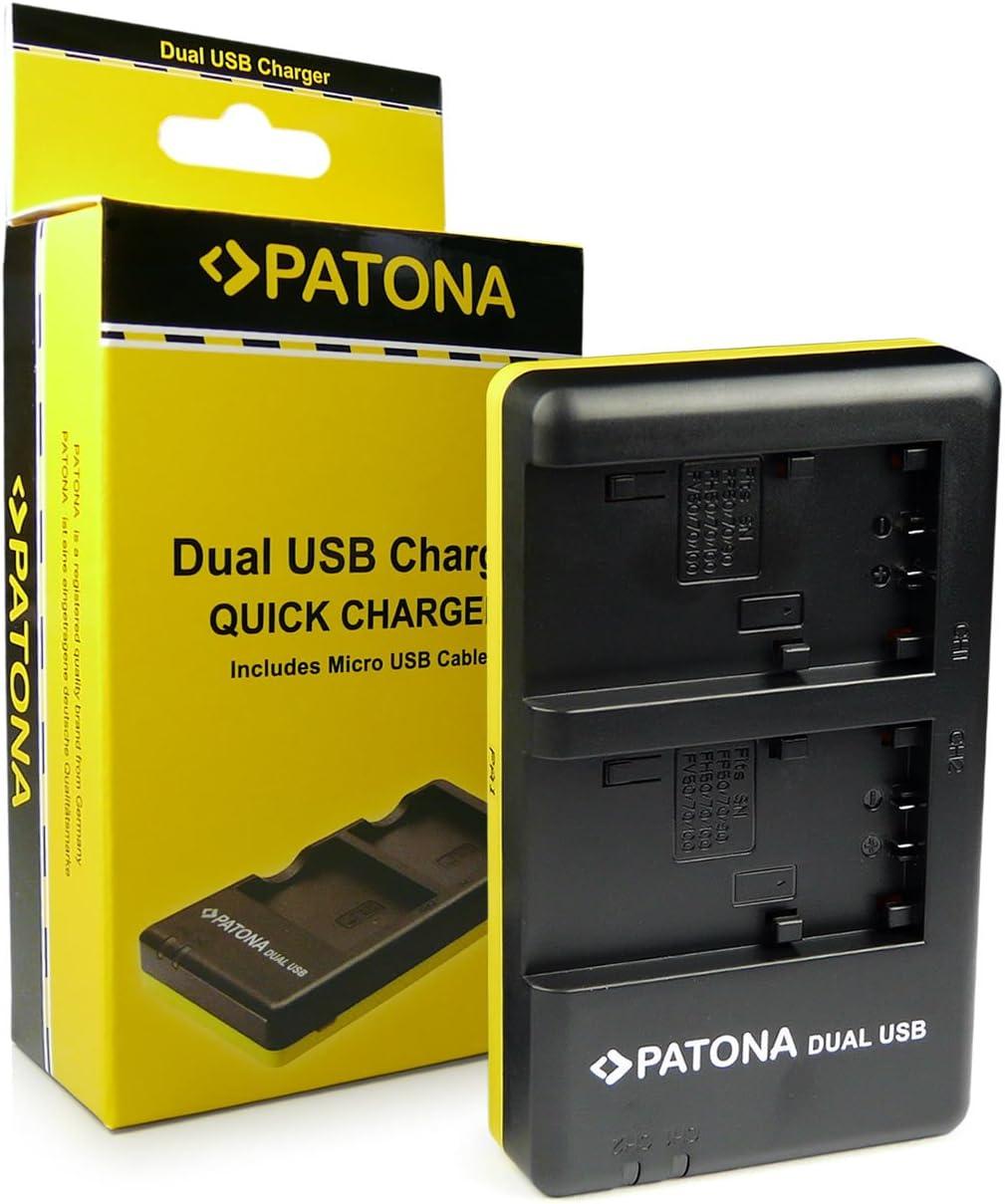 2in1 Cargador doble pantalla para Sony DSC-HX1 HXR-MC1P