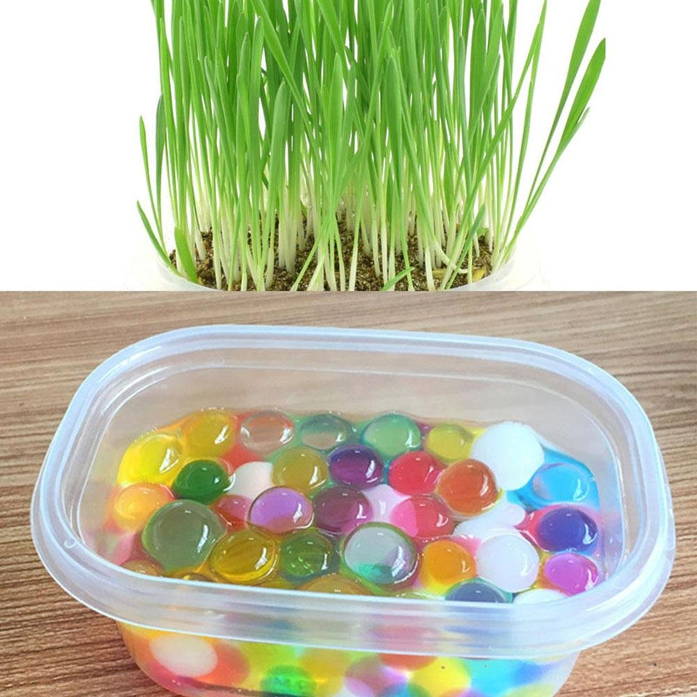 Cat Grass Seed Packets, Aolvo Non-GMO Chemical Free Organic Cat Grass Kit Included Organic Seed Organic Soil Grass Tray, Nutrition Dog Cat Wheat Grass Seed for Natural Digestive Aid Hairball Control