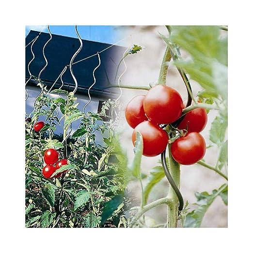 OSE - Tutor de tomatera con agujero - 5 unidades - Color gris ...