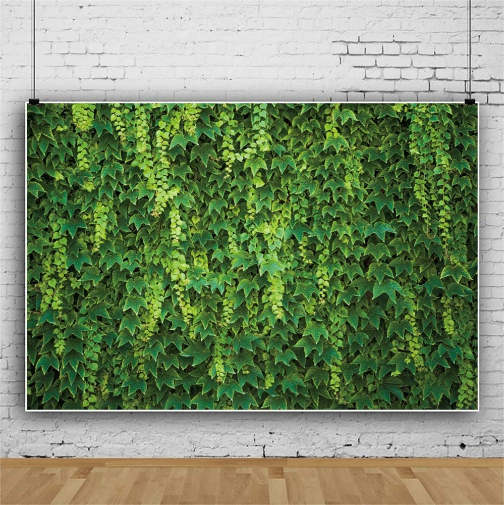 Leowefowa 10x8ft Spring Vibrant Green Ivy Leaves/Backdrop Vinyl Photography Background Spring Nature Landscape Child Adult Photo Shoot Event Activities Photo Booth Wallpaper Studio Props