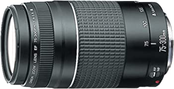 Canon EF 75-300mm Telephoto Zoom SLR Cameras Lens