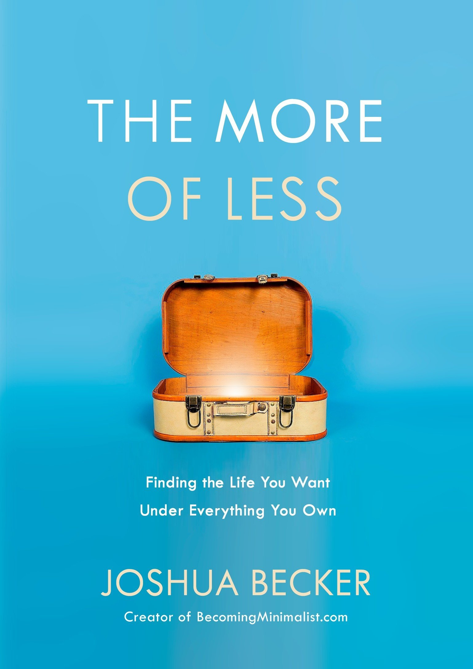 Image result for The More of Less: Finding the Life You Want Under Everything You Own