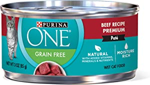 Purina ONE High Protein, Natural Wet Cat Food - (24) 3 oz. Cans