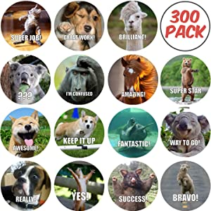 300 Pack Reward Stickers for Teachers. Fun Motivational & Incentive Stickers for Kids. Trendy Animal Meme Stickers for All Ages and All Classes.