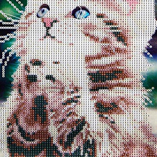 - Xuanhemen Naughty Kitten Cat Picture Rhinestone Embroidery 5D DIY Painting Needlework Stitchwork Drawings Decor Gift