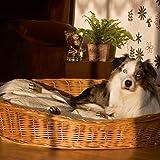 Aumüller Weidenkorb für Hunde sind bequem und urgemütlich aus geschälten, naturbraunen Vollweiden der Hundekorb ist äußerst robust der Korb ist ein reine Naturprodukt