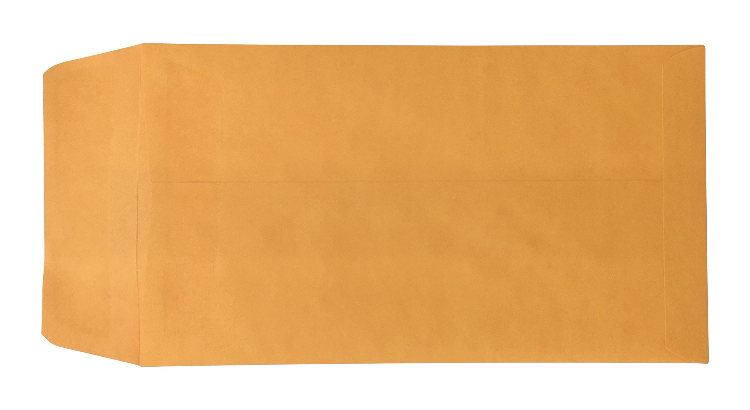 Blank License Plate Envelopes (Press and Seal)