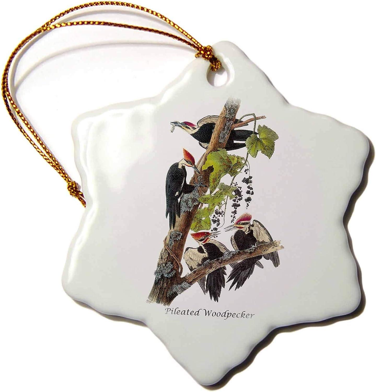 3dRose Pileated Woodpecker by John James Audubon - Ornaments (ORN_114053_1)