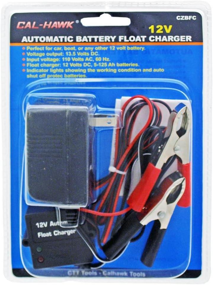 12 V batterie automatique Float chargeur
