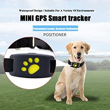 Mini GPS rastreador de mascotas de Lifesongs, GPS inteligente ideal para rastrear perros, gatos
