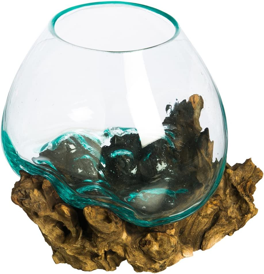 Cape Craftsmen Hand-Blown Delicate Blue Tinted Bubble Glass On Driftwood Terrarium Décor Planter (Medium)