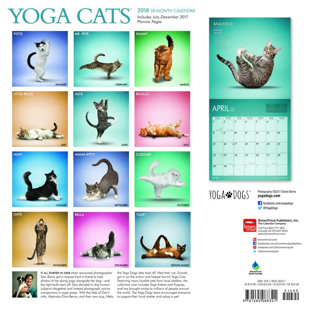Yoga gatos 2018 oficial calendario 2018 + Celebrity imán para nevera: Amazon.es: Oficina y papelería