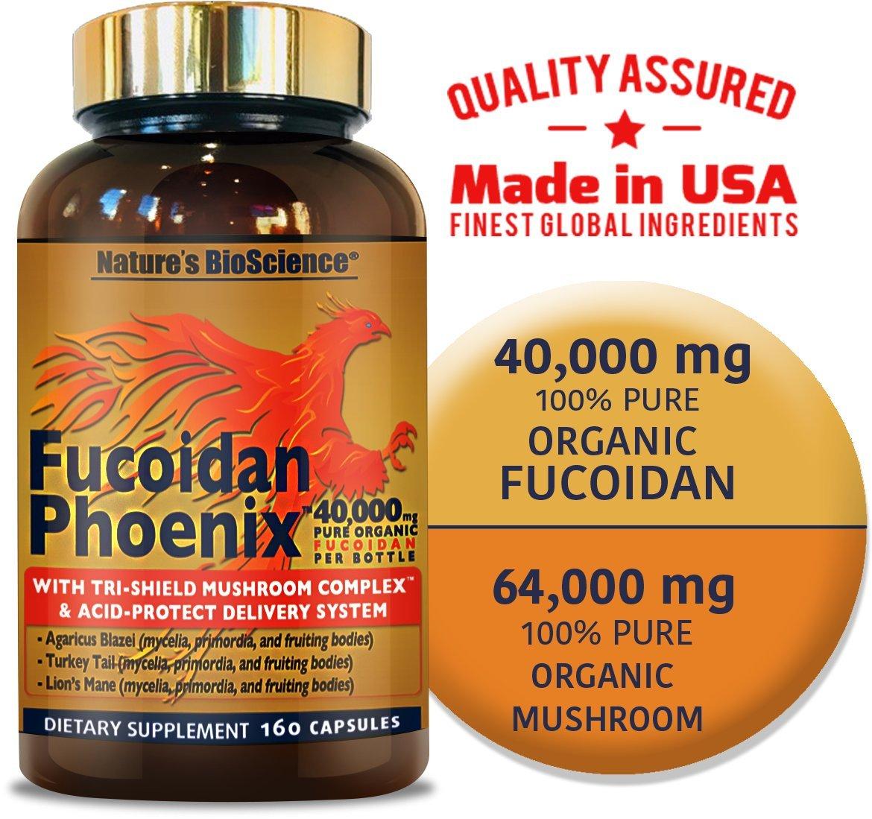 FUCOIDAN Phoenix by Nature s BioScience 40,000 mg of Pure Fucoidan 64,000 mg of Pure Mushroom