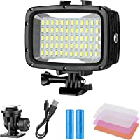 Neewer Dimmable Waterproof Underwater LED Video Light for Canon, Nikon, Sony, Panasonic, Pentax SLR cameras and Gopro (Batteries included)