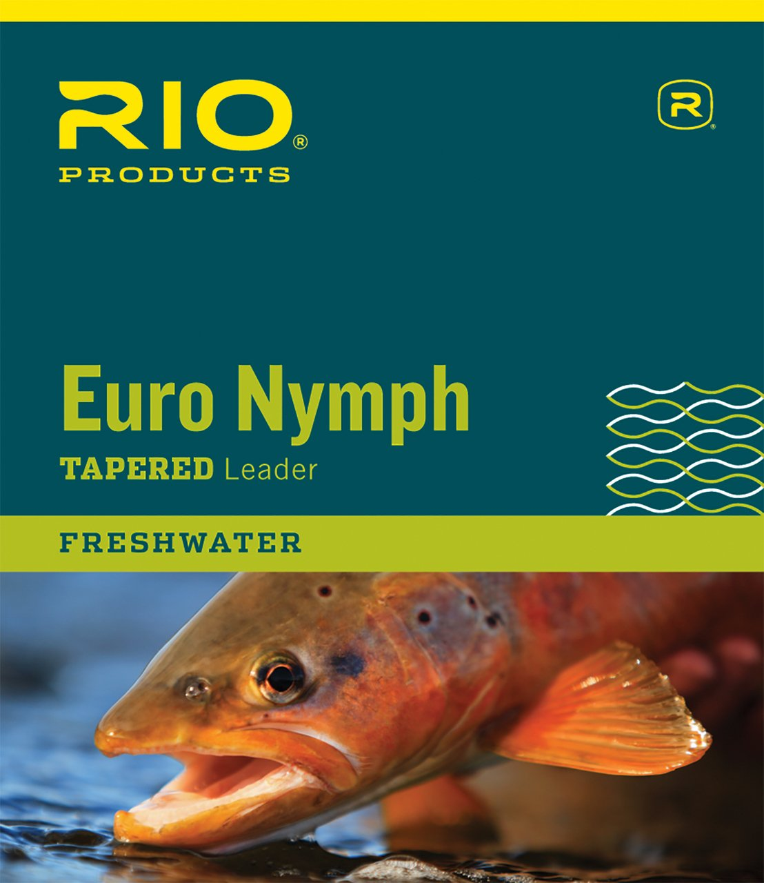 Rio Fly Fishing Euro Nymph with Tippet Ring Fishing Leaders, Clear by RIO Products