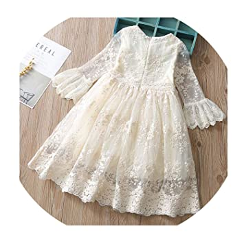 8b529f7451500 Amazon.com: Spring Autumn Treasure Lace Dress Baby Party Wedding ...