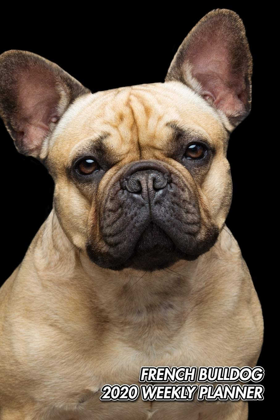 French Bulldog 2020 Weekly Planner: Frenchie | Bouledogue ...