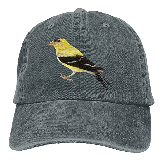 Cowboy Hat Cap For Men Women Quzim Iowa Symbolic Animal Goldfinch At