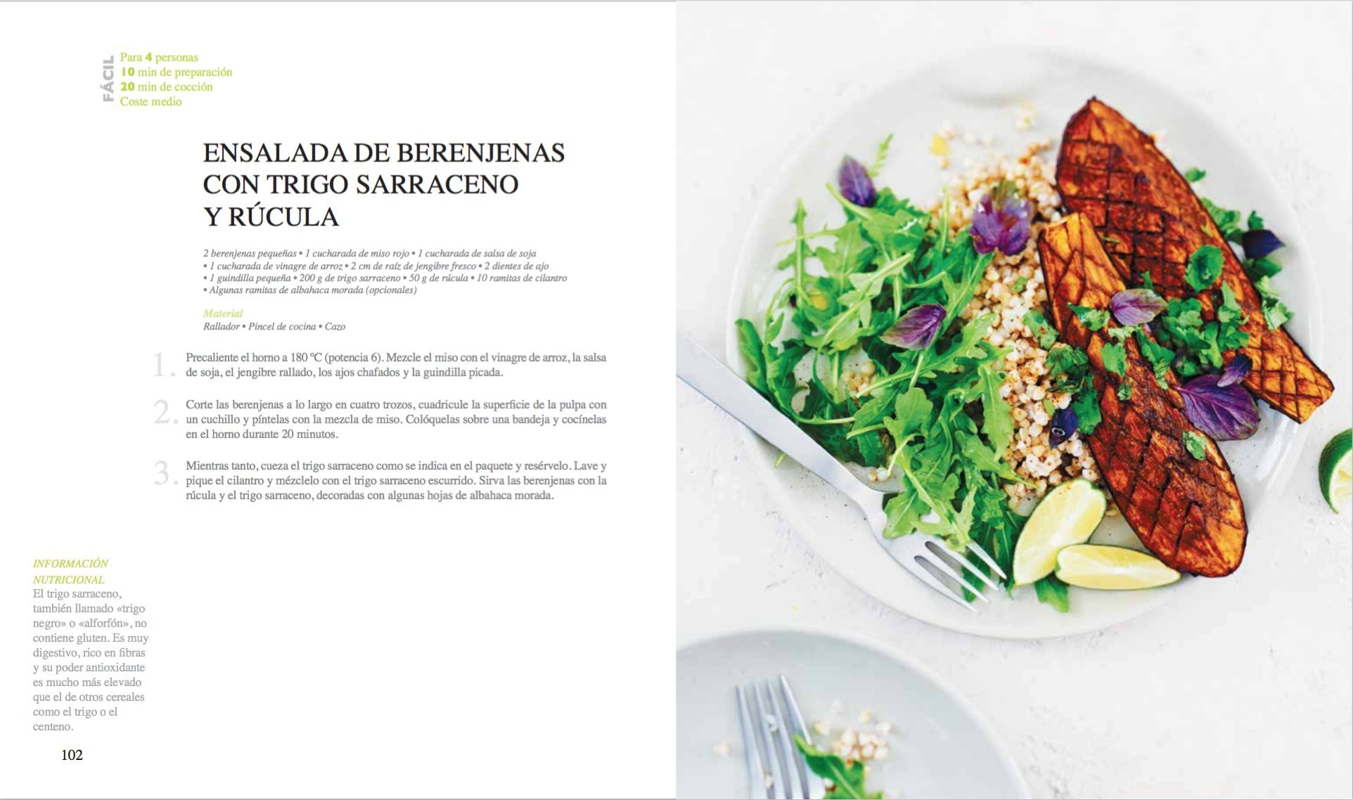 Detox: Recetas para depurar el organismo (Spanish Edition): Coralie Ferreira: 9788416407118: Amazon.com: Books