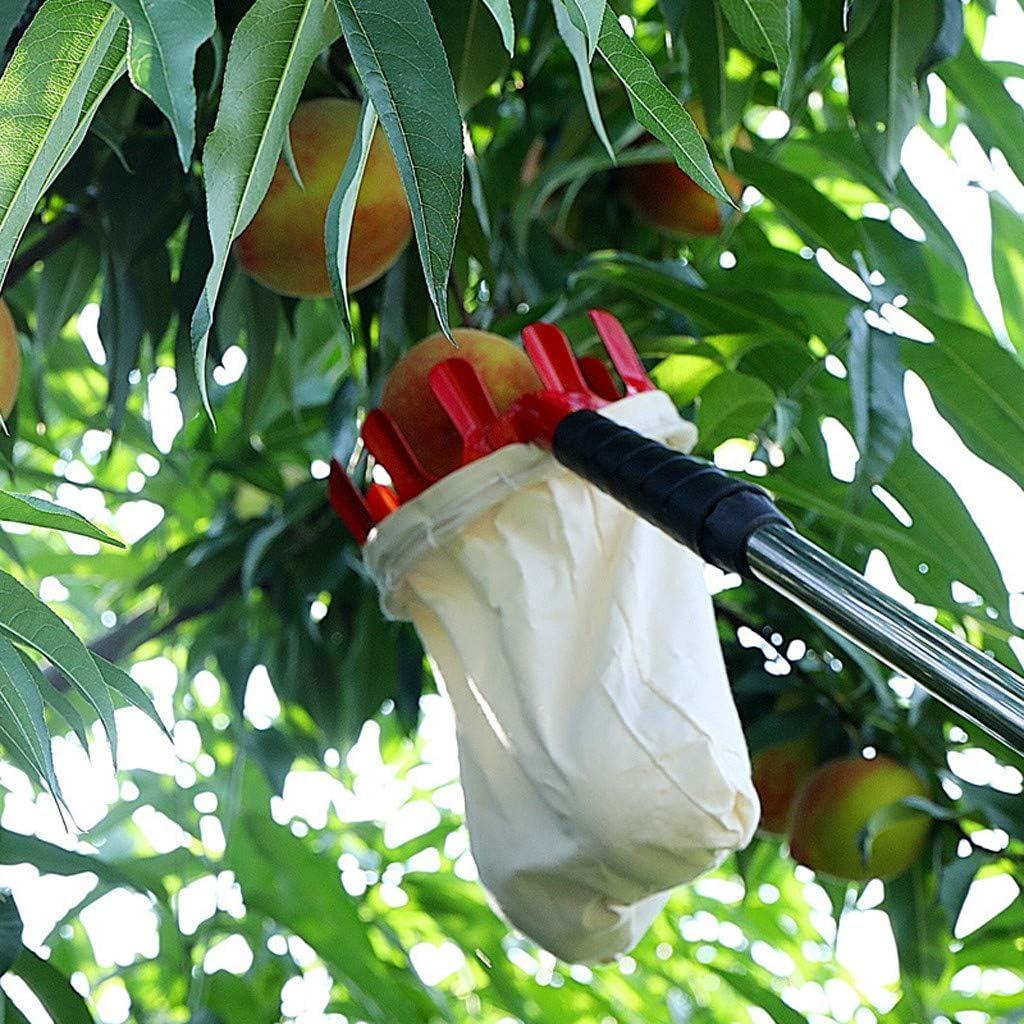 Sammeln von Apple Citrus Pear Peach rot FENG Obstpfl/ückkorb oder Obstpfl/ückwerkzeuge Outdoor-Obstpfl/ücker Praktischer Garten Einfachpfl/ückwerkzeug Obstf/änger
