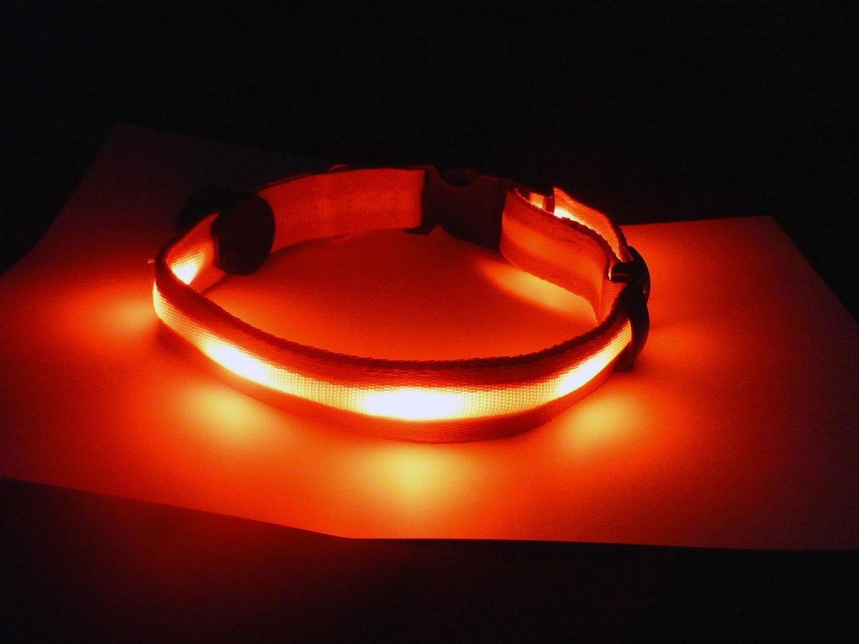 BXT® Colliers Animalerie Lumineux LED Grille à Haute Perméabilité Brillant Collier pour Chien Couleur Rouge (Taille- S) Baixt Groupe Limited