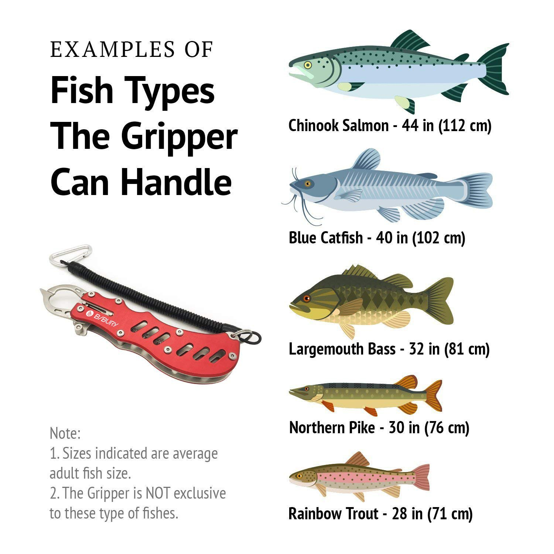 Werkzeug Fischen Gripper Außen Ausrüstung Zange Fisch Lip Edelstahl