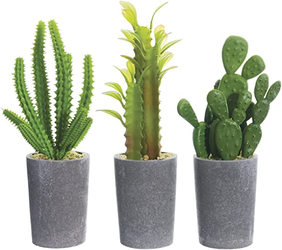 Set Of 3 Artificial Potted Cacti 8 Inches High Home Kitchen Amazon Com