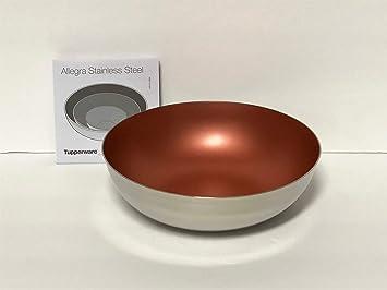Tupperware Allegra - Cuenco de acero inoxidable (3 1/4 tazas ...