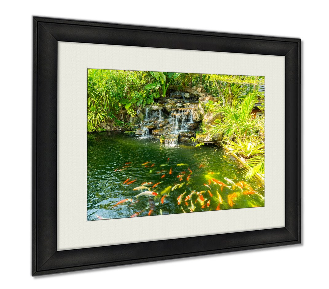 Ashley Framed Prints Koi Carp Fishes In The Pond Of Phuket Botanical Garden At Phuket Island, Wall Art Home Decoration, Color, 30x35 (frame size), AG5889202 by Ashley Framed Prints