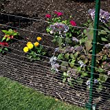 """YARDGARD 308302B Fence, 48"""" x 50'/4"""" x 2"""", Color"""