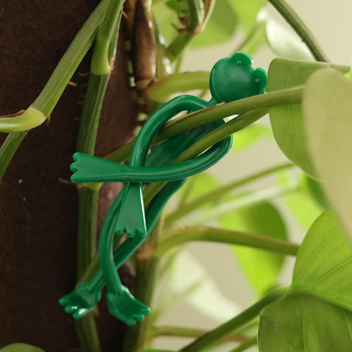 20 piezas de planta flexible Tie