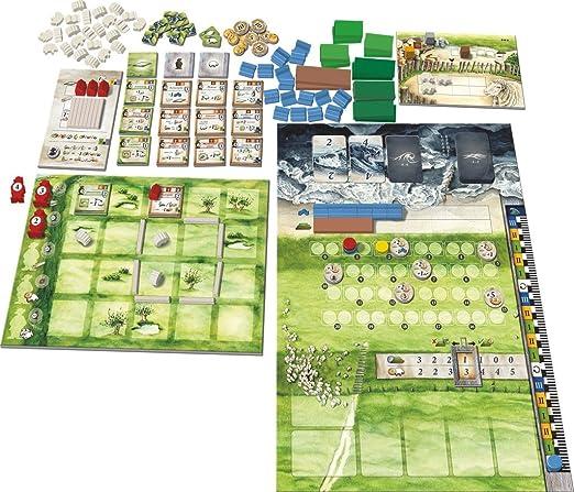 Maldito Games Tierras Bajas - Juego de Mesa: Amazon.es: Juguetes y juegos