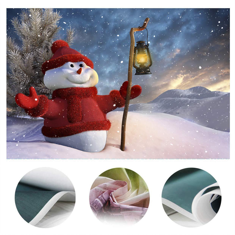 LYWYGG 6x9FT Fondo de Navidad Fondo de Foto de Mu/ñeco de Nieve de Navidad Copo de Nieve Blanco Fondo de Piso de Madera Decoraci/ón de Navidad Accesorios de Estudio CP-79-1010