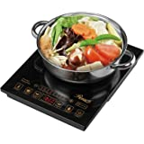 "Rosewill 1800 Watt 5 Pre-Programmed Settings Induction Cooker Cooktop, Included 10"" 3.5 Qt 18-8 Stainless Steel Pot, Gold, RHAI-16002"