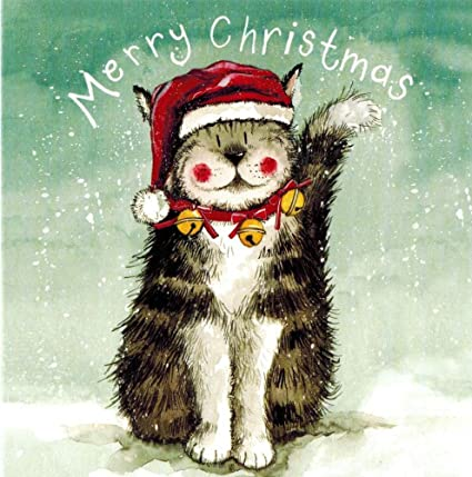 alex clark art chistmas cat in a hat christmas cards set of 10 cards - Amazon Christmas Cards