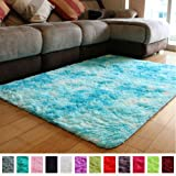 PAGISOFE Fuzzy Abstract Area Rugs for Bedroom