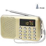 LEFON 充電式 多機能 AM FMポケットラジオ USB.microSDカード対応 MP3プレーヤー LEDライト ポータブルラジオ (金色)