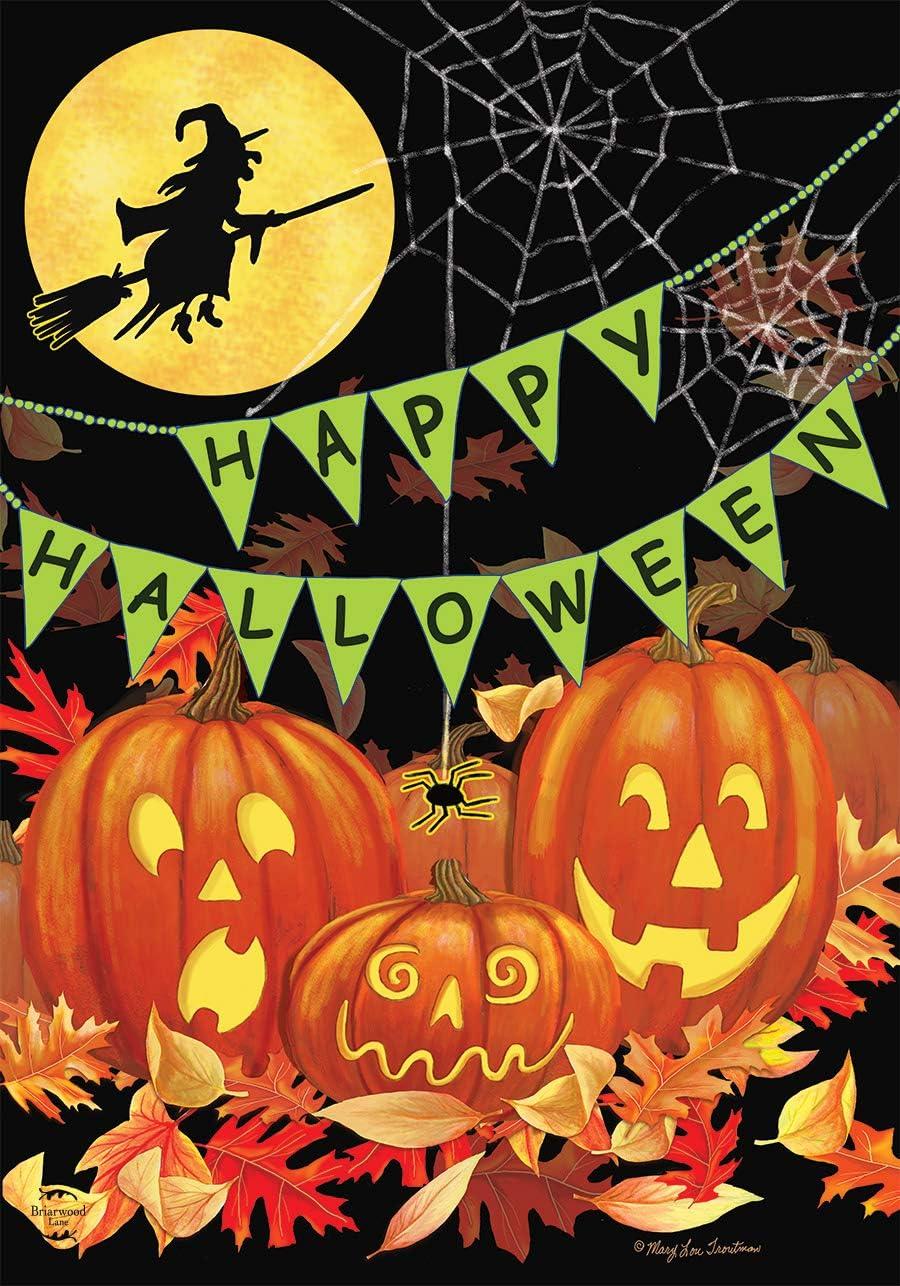 Briarwood Lane Halloween Haunts House Flag Witch Jack-o-Lantern 28