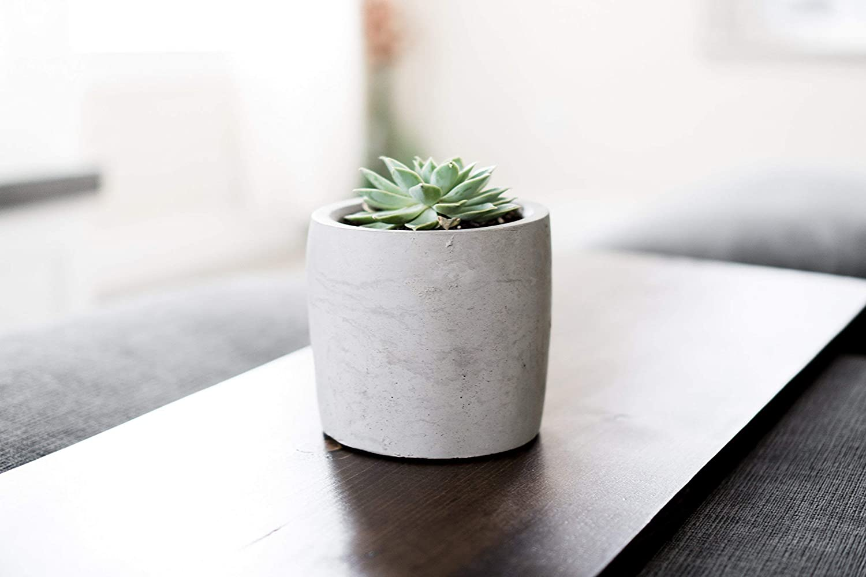 Plant Concrete Succulent Pot Minimalist Large Outdoor Cactus Planter Modern Indoor